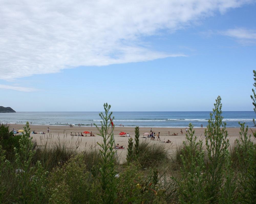 Playa de Oyambre_61